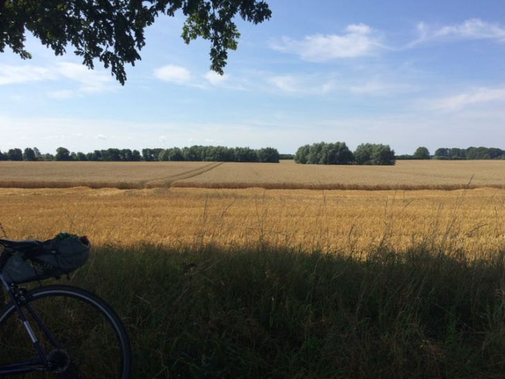 Roetliche Felder